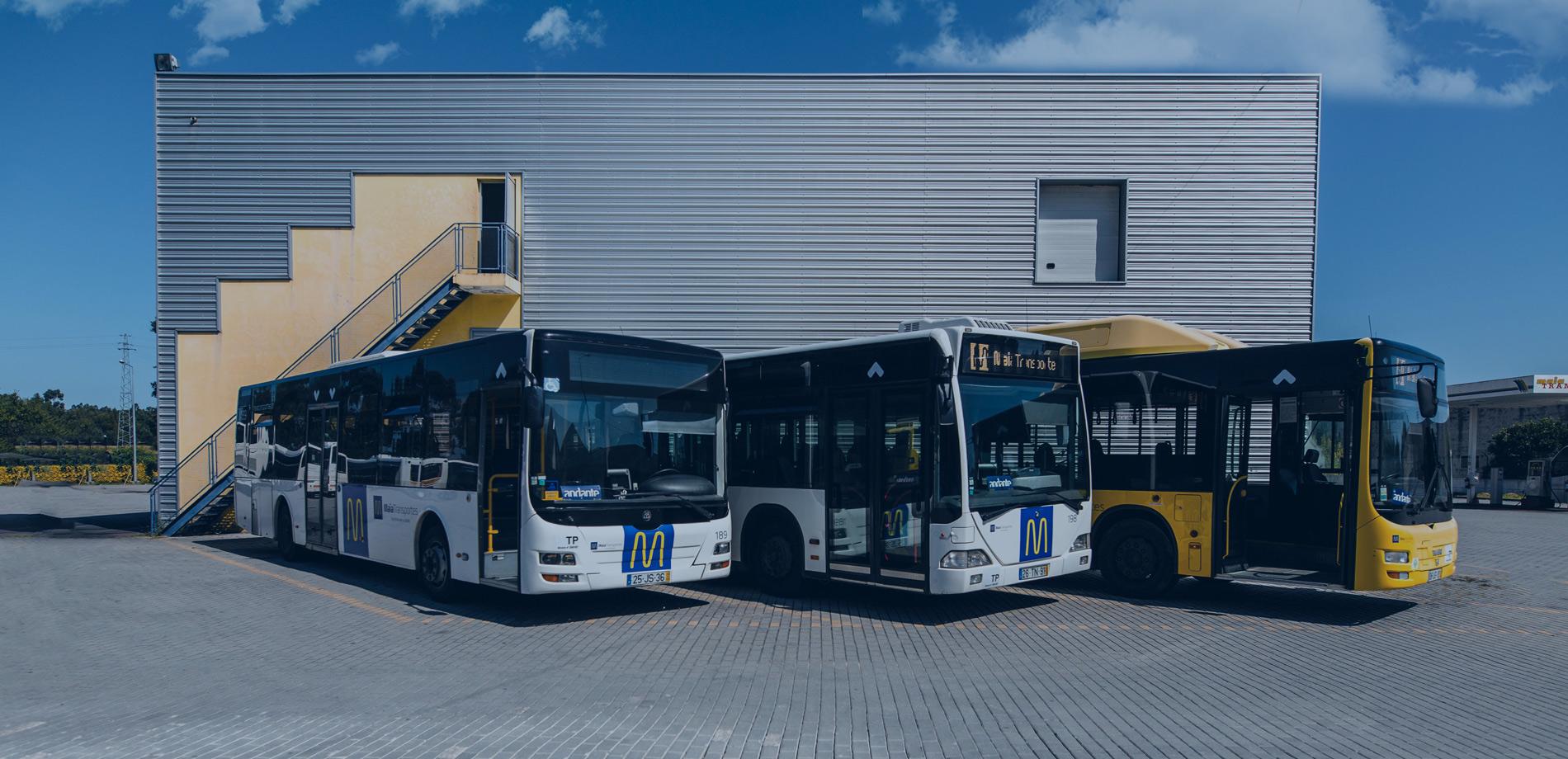 Maia Transportes Frota